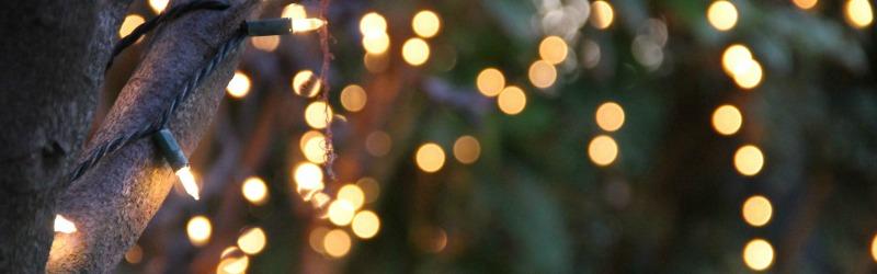 lights tree string